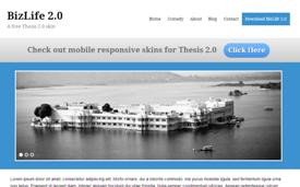 Thesis 2.0 Bizlife Skin