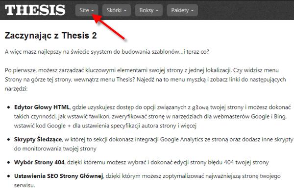 Optymalizacja strony z Thesis 2