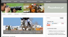 Budowa bloga pasjakonie.pl